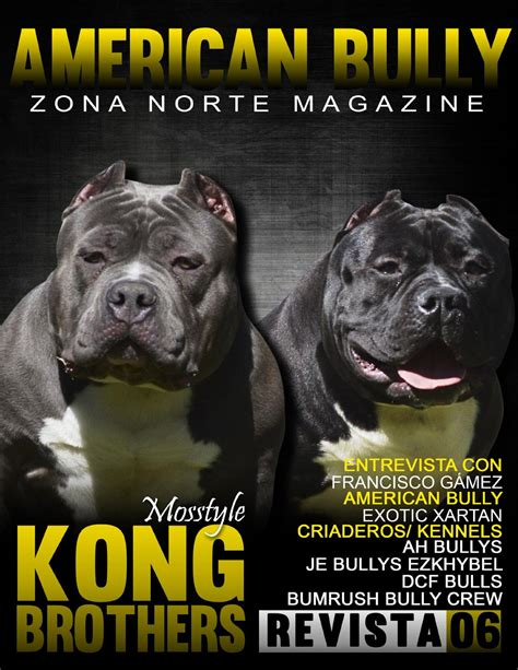 American bully magazine no 6 by american bully zona norte